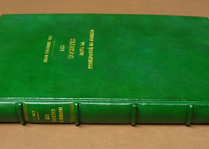 libro in stile antico in pelle verde